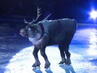 """Rentier Sven aus """"Die Eiskönigin"""" bei der Premiere von """"Disney On Ice"""""""