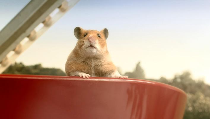 Hamster Hank (Foto: eBay)