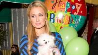 Paris Hilton: Frisch verliebt