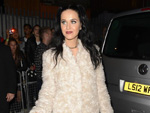 Katy Perry und Co.: Haustier-Stress