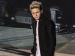 One Direction: Niall Horan bestätigt Auszeit