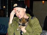 Miley Cyrus: Welpe kann sie nicht trösten