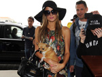Paris Hilton: Hochzeit im Kopf?