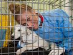 Alena Gerber: Macht sich für Straßenhunde stark