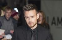 Liam Payne produziert sein eigenes Album