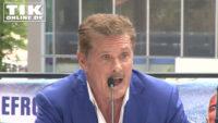 David Hasselhoff wird 65 – Promis gratulieren zum Geburtstag!