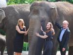 Kim Fisher und Luci van Org: Elefanten-Rüssel unterm Rock!