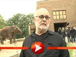 Udo Walz hat Angst vor Elefanten