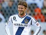 David Beckham: Bald Boss eines Fußball-Vereins?