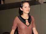 Marion Cotillard: Sticht Natalie Portman aus