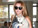 Miley Cyrus: Bruder Trace macht sie zur Tante