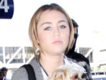 Miley Cyrus: Eine Kifferin?