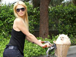 Paris Hilton: Kuschelt mit Männermodel