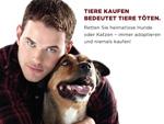 Kellan Lutz: Twilight-Star macht sich für Tierheimbewohner stark