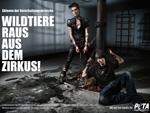 Tokio Hotel: Machen sich für PETA stark