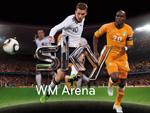 Public Viewing in 360°: Die Sky WM-Arena im P1