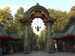 Trauer im Berliner Zoo: Kragenbärin Mäuschen ist tot